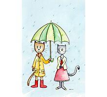 Rain Cats Photographic Print