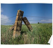 Native Stone Fence Post Poster