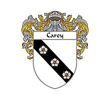Carey Coat of Arms/Family Crest Photographic Print