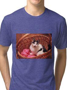 Lovely cat preparing for winter Tri-blend T-Shirt