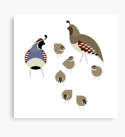 Quail Family Canvas Print
