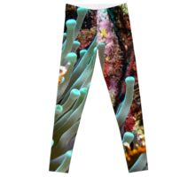 Sea Anemone and Coral Wall Leggings
