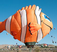 Hot Air Balloon Clown Fish by donberry