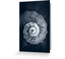 Snail Shell Greeting Card