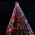 Burt Street Community Tree by V1mage