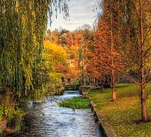 The Weirs in Winchester in Autumn by NeilAlderney