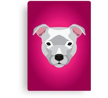 White Staffordshire Bull Terrier Canvas Print