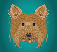 Yorkshire Terrier  by threeblackdots