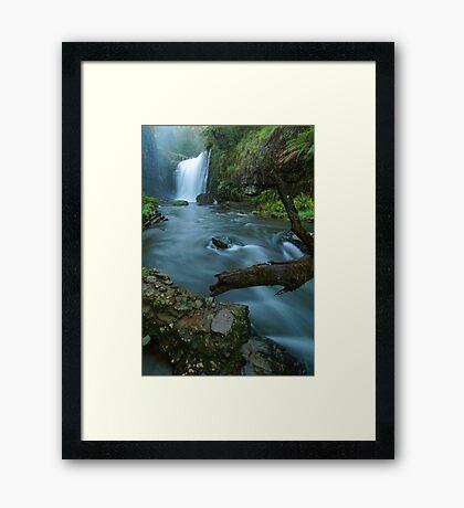 'White Coal': Guide Falls, near Burnie, north-western Tasmania Framed Print