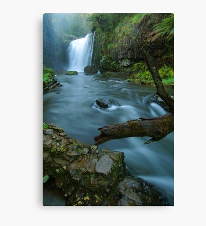 'White Coal': Guide Falls, near Burnie, north-western Tasmania Canvas Print