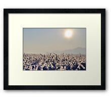 Italy - Monferrato Framed Print