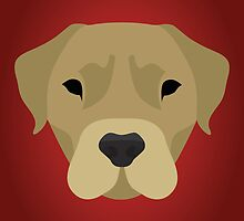 Golden Labrador  by threeblackdots