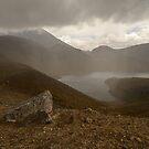 Upper Tama Lake by Werner Padarin