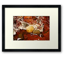 Root Beer Water Framed Print