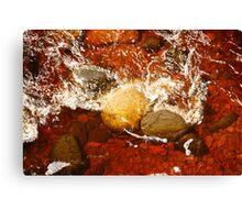Root Beer Water Canvas Print