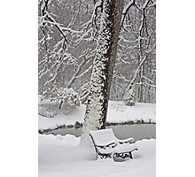 Snow Bench Photographic Print