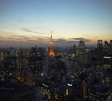 Sunset in Tokyo 2 by amberfox17
