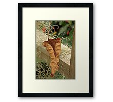 Dried Leaf  Framed Print