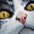 Cat Eyes - original oil painting cat portrait by LindaAppleArt