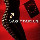 Zodiacs - Sagittarius by Carnisch
