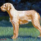Hungarian Wirehaired Vizsla Dog Portrait by Oldetimemercan