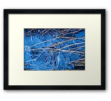 Frozen reeds Framed Print