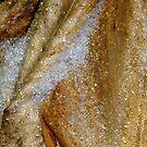 Frozen Cannas by WildestArt