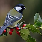 Great tit - II by Peter Wiggerman