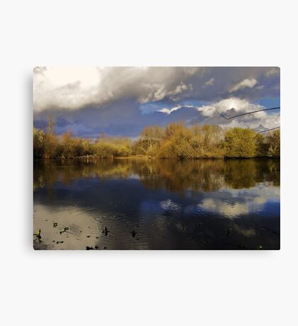 UW Botanic Gardens in late fall. Canvas Print