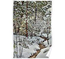 Snowy Mountain Creek Poster