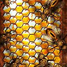 Steampunk - Apiary - The hive by Mike  Savad
