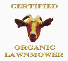 Certified Organic Lawnmower by Marie Van Schie