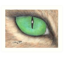 Cats Eye Feline Animal Art Pets Cathy Peek Art Print