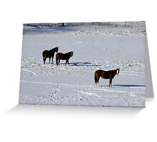 Chestnuts In The Snow Greeting Card