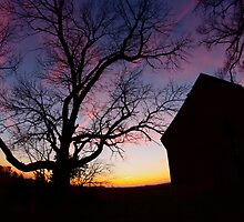 Barn and Tree at Sunset, Indiana by Kent Nickell