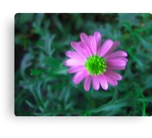 Pink flower on green Canvas Print
