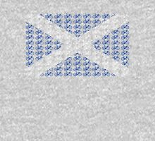 Bike Flag Scotland (Small) Unisex T-Shirt