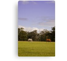 South Africa Canvas Print