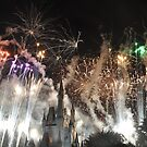 Bright as Day Fireworks by Jill Vadala