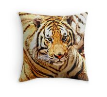 Bengal Tiger Throw Pillow