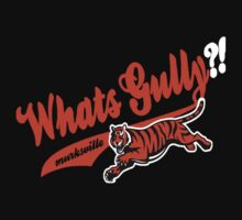 Whats gully? (BENGALS)  by Diggsrio