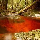 Detention River 1 by Paul Campbell  Photography