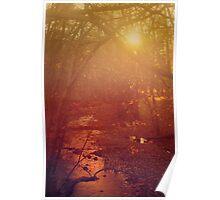 Sunlit Streams Poster