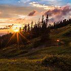 Last Light at Cedar by Chad Dutson