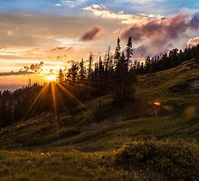 Last Light at Cedar by Chad Dutson