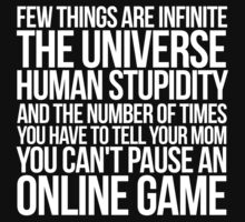 Few things are infinite The universe, human stupidity, and the number of times you have to tell your mom you can't pause an online game by SlubberBub