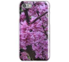 Purple Tree Branches during Summer iPhone Case/Skin