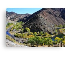 Brunswick Canyon on the Carson River, Moundhouse, Nevada USA Canvas Print