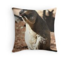 Wallaby Throw Pillow