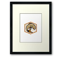 Trout Jumping Cartoon Shield Framed Print